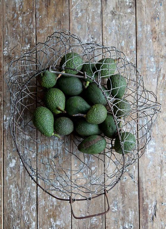 Rustic Avocados for Catering Decor